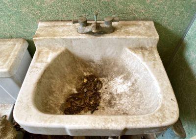 abandoned farmhouse bathroom sink