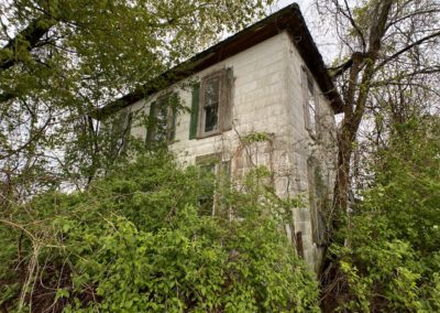 abandoned farmhouse being reclaimed by nature