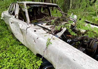 vintage-car-abandoned-in-ohio-woods
