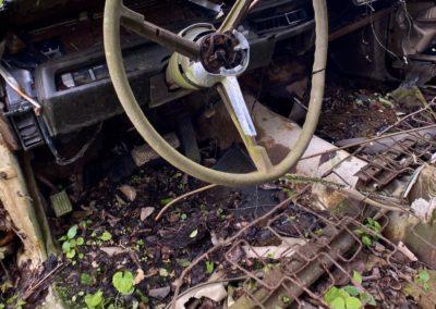 abandoned-dodge-car-steering-wheel