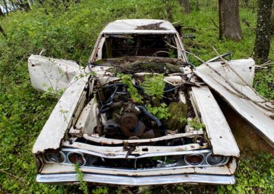 abandoned-dodge-cornet-in-the-woods
