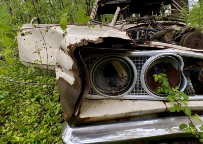 abandoned-car-reclaimed-by-nature-headlight