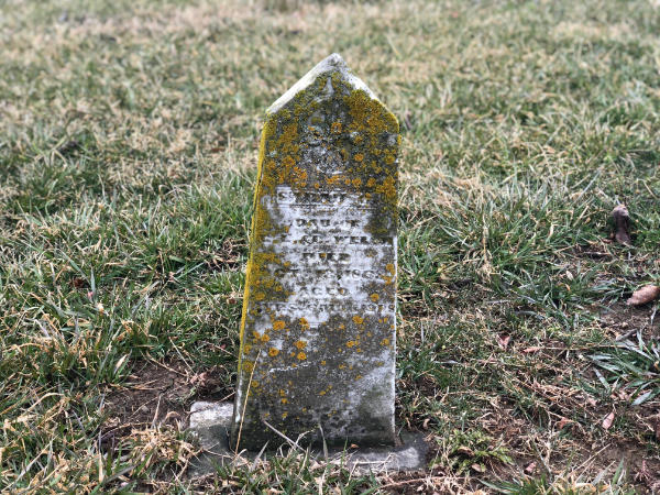 Abandoned Cemetery Ohio Small Pointed Tombstone