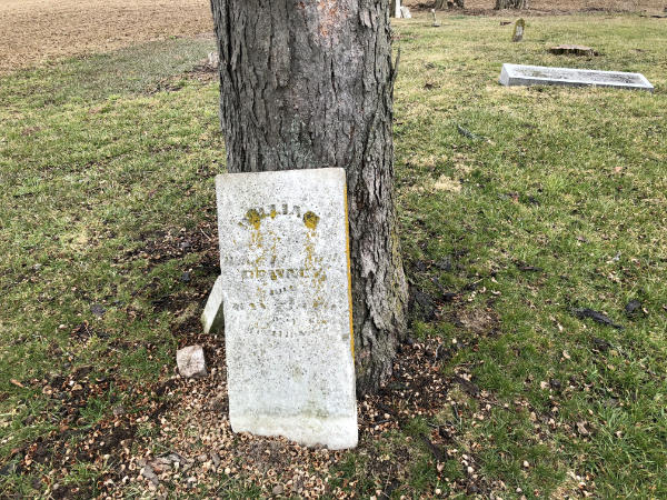 abandoned cemetery in ohio with tombstone leaning against tree