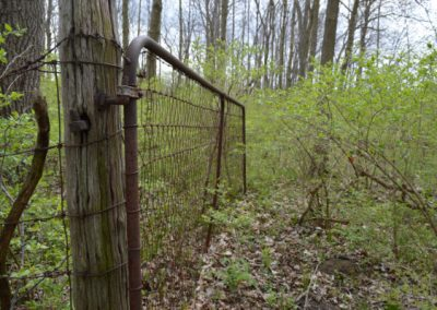 gate to abandoned cemetery in the woods in ohio