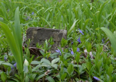 headstone hidden by purple flowers