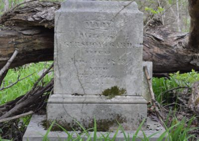 abandoned headstone with tree fallen