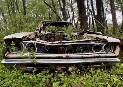 front-of-abandoned-dodge-coronet-in-woods