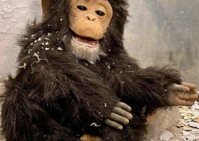 creepy monkey doll