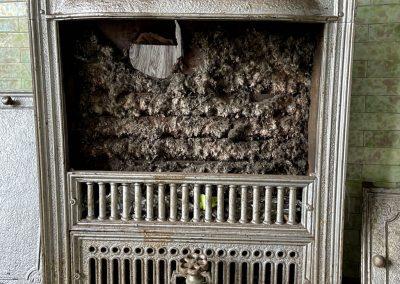 1800s victorian fireplace green tile insert
