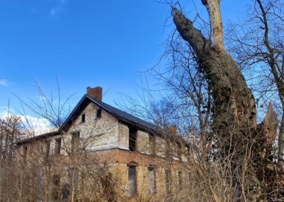 abandoned colonial farmhouse front tree