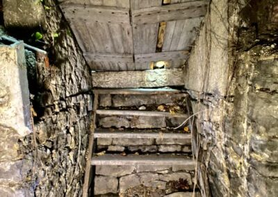 basement-entrance-victorian-house