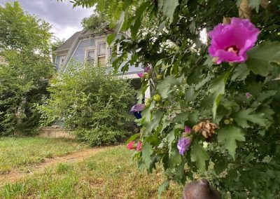 abandoned-victorian-house-dayton-pink-flower