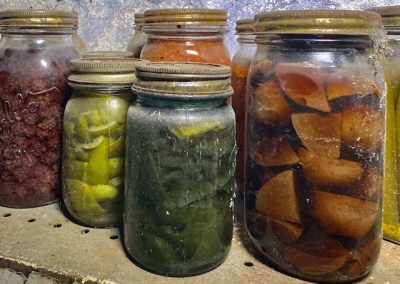 colorful-canned-fruit-vegetables