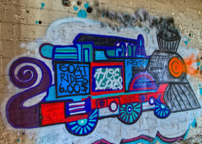hoe_express_train_graffiti