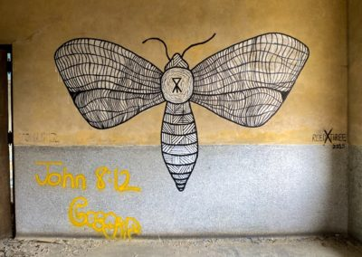 abandoned moth mural inside abandoned school